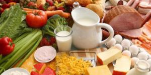 makanan nutrisi