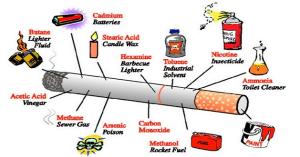 zat kimia rokok