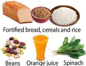 makanan asam folat 5