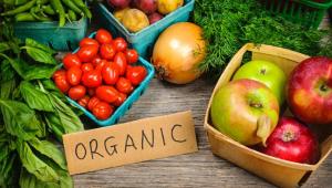 sayur dan buah organik